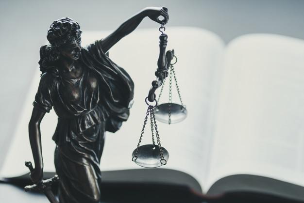 برنامج القانون الدولي